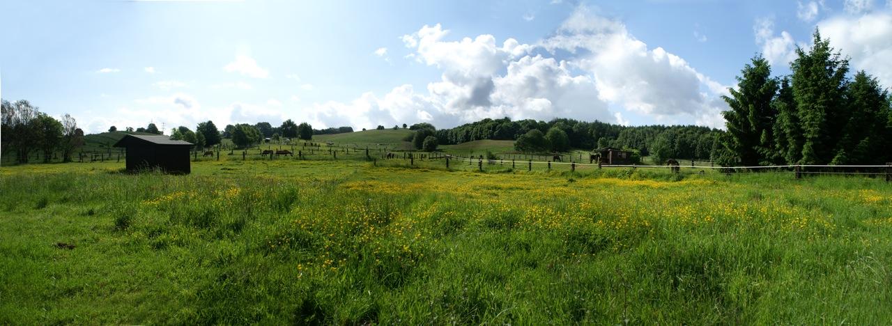 Panorama_Weiden